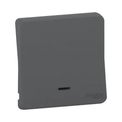 Mureva Styl - Enjoliveur avec lentille - IP55 - IK08 - gris - MUR34204