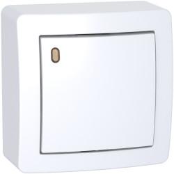 Alréa, Va-et-vient lumineux forte luminosité avec cadre saillie, blanc polaire - ALB62057P