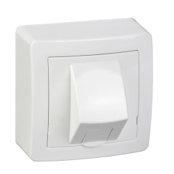 Alréa, RJ45 simple catégorie 6 UTP avec cadre saillie, blanc polaire - ALB62342P