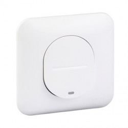 Ovalis - interrupteur simple - lumineux temoin ou localisation - S260263