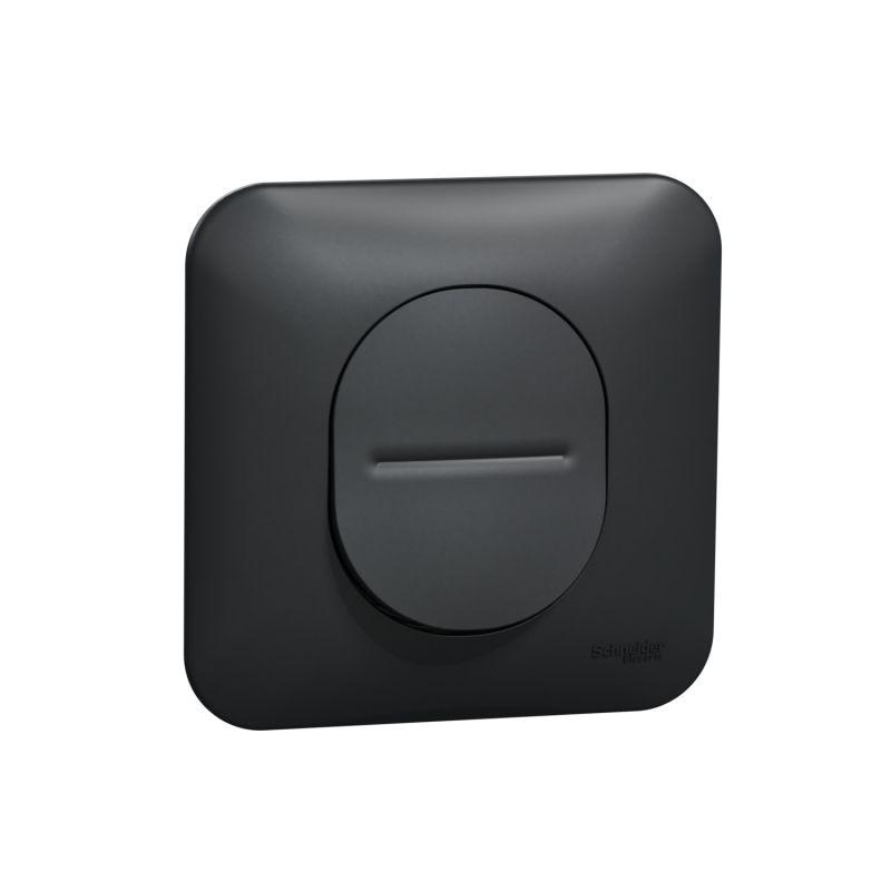 Ovalis - interrupteur va et vient - 10AX - avec griffes Avec plaque -Anthracite- S465204
