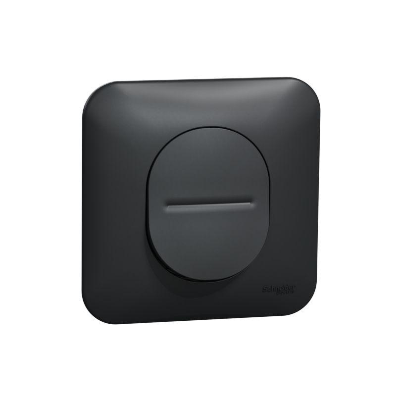 Ovalis - bouton poussoir à fermeture -10A - avec griffes Avec plaque -Anthracite- S465206